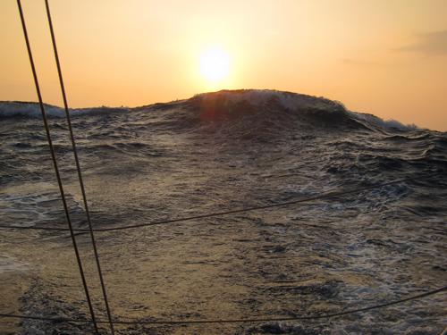 これぞ外洋の波